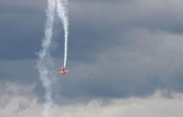Red Bull Air Racer
